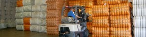 Clamp Truck Moving Baled Product